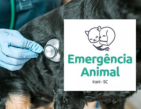 Assistência para animais abandonados ou vítimas de maus tratos